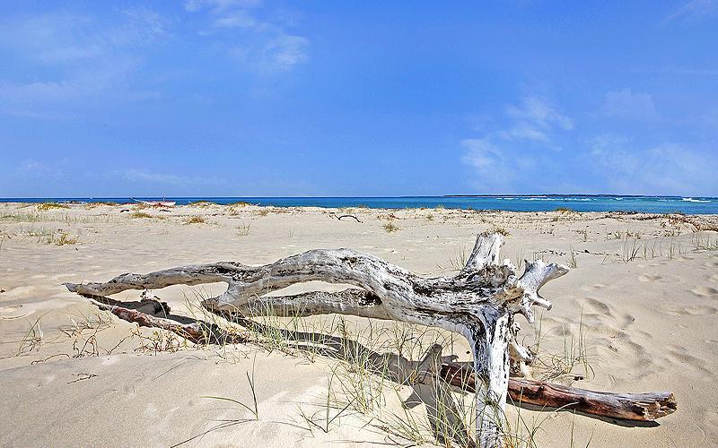 Beach Bach Holiday House, North Stradbroke Island - Straddie Sales & Rentals